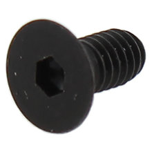 M2.5-0.45 x 5 mm Socket Head Cap Screw